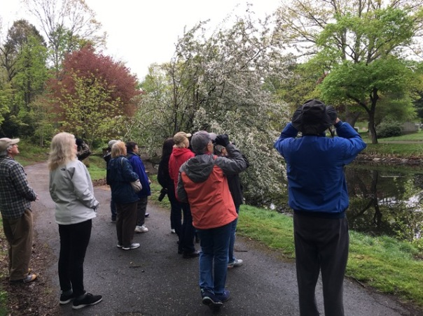 FOG Guided Birdwalk - May 13, 2018